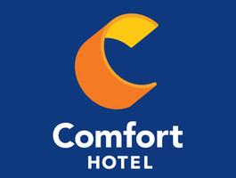 Comfort Hotel Lyon Aeroport